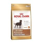 Pienso Labrador Retriever Adulto Esterilizado 12 Kg de Royal Canin