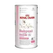 Babycat Milk Lait Chaton de 0 à 2 Mois 300 g de Royal Canin