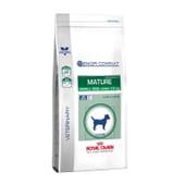 Veterinary Diet Ração Cão Senior Raças Pequenas Consult 3,5 Kg da Royal Canin