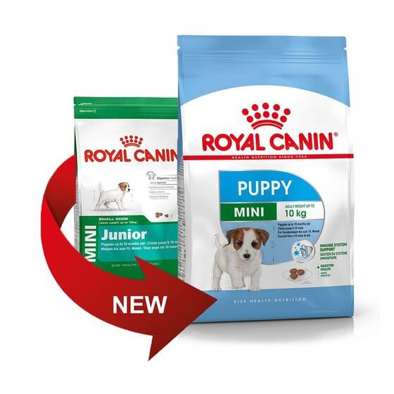 Ração Cão Puppy e Junior Raças Pequenas 4 Kg da Royal Canin