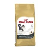 Ração Gato Adulto Bosque De Noruega 10 Kg da Royal Canin