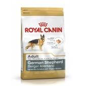 Ração Pastor Alemão Adulto 3 Kg da Royal Canin