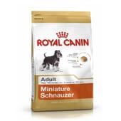 Ração Schnauzer Miniatura Adulto 7,5 Kg da Royal Canin