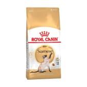 Pienso Gato Siamés Adulto 4 Kg de Royal Canin