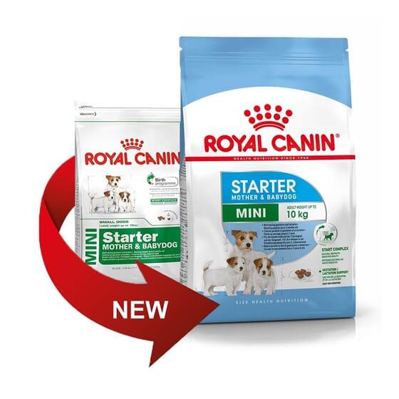 Ração Cachorro Raças Pequenas Starter Mother & Babydog 1 Kg da Royal Canin