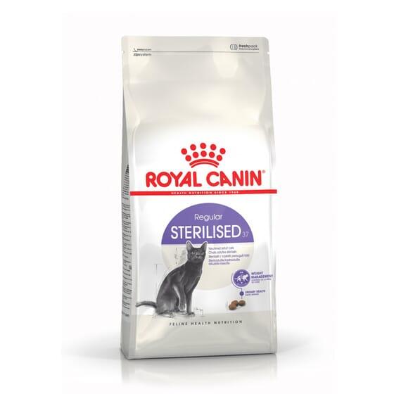 Ração Gato Adulto Esterilizado 37 10 Kg da Royal Canin