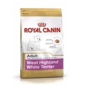 Ração West Highland Terrier Adulto 500g da Royal Canin