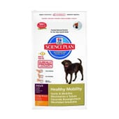 Science Plan Perro Adulto Healthy Mobility Raza Grande Pollo 12 Kg de Hill's