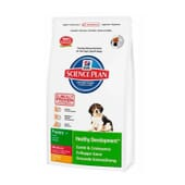 Science Plan Cachorro Healthy Development Raças Médias Frango 3 Kg da Hill's
