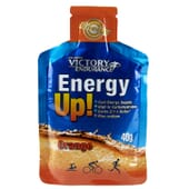 ENERGY UP! 40g - VICTORY ENDURANCE