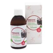 NUMCKATOS SIROP ADULTES 250 ml Naturlider