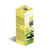 EXTRACTO ALCACHOFERA 50ml