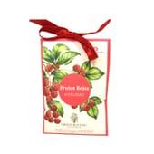 Iap Pharma Green Botanic Perfumador De Armario Frutos Vermelhos  13g de Iap Pharma