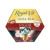GELEIA REAL ROYAL VIT VIGOR 20 Frascos de 10ml da Dietisa