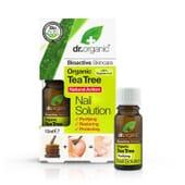 SOLUTION POUR ONGLES ARBRE À THÉ BIO 10 ml Dr Organic
