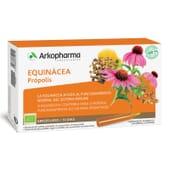 ARKOFLUIDE ÉCHINACÉE PROPOLIS 10 Ampoules de 15 ml - ARKOPHARMA