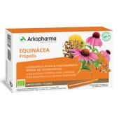 Arkofluido Echinacea Propolis 10 Ampollas De 15 ml da Arkopharma
