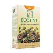 ECOTINT BLOND CLAIR DORÉ-8D 130 ml de Noefar.