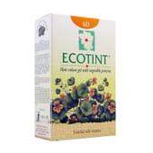 ECOTINT BLOND FONCÉ DORÉ-6D 130 ml de Noefar.