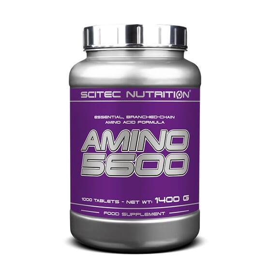 Amino 5600 favorise le développement de la masse musculaire et sa régénération.