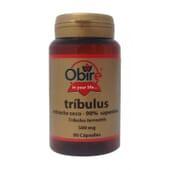 TRIBULUS 500MG 90 Caps de Obire.