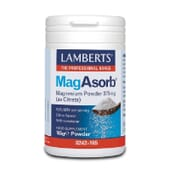 MagAsorb 375mg Magnesium Powder 165g de Lamberts