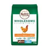 Wholesome Essentials Cão Adulto Raças Grandes Frango e Arroz 11 Kg da Nutro
