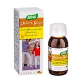 Pólen - Geleia Com Ginseng E Vitamina E 37 Pérolas da Santiveri