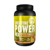 CREATINE POWER MIX 1 Kg - GOLD NUTRITION