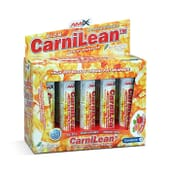 CarniLean Burner 10 x 25ml de Amix Nutrition