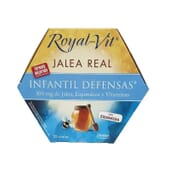 Geleia Real Royal Vit Infantil 20 x 10 ml da Dietisa