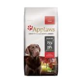 Dog Dry Adulte Grande Taille Poulet 15 Kg de Applaws