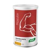 Músculo Proteína Vegetal 455g de Santiveri