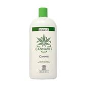 Cannabis CBD Champô Bio 500 ml da Drasanvi