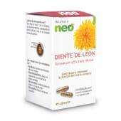 Dente De Leão 45 Caps da Neo