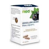 Groselha Preta Neo 45 Caps da Neo