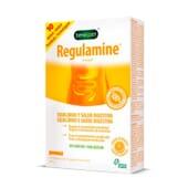 REGULAMINE 10 x 6g - BENEGAST