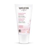 O Creme Facial Calmante de Amêndoa hidrata a pele sensível.