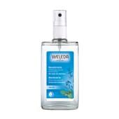 Desodorante de Salvia es un desodorante natural sin sales de aluminio.