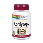 Cordyceps é um complemento com eficácia garantida.