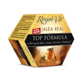 JALEA REAL ROYAL VIT TOP FORMULA 20 x 10ml - DIETISA
