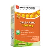 Geleia Real 1000Mg 20 x 10 ml da Forte Pharma