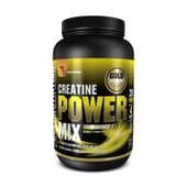 CREATINE POWER MIX 1 Kg - GOLD NUTRITION
