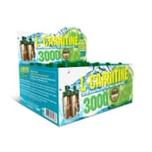 L-CARNITINE 3000 - 20 x 10ml - GOLD NUTRITION