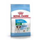 Pienso Perro Puppy y Junior Razas Pequeñas 2 Kg de Royal Canin