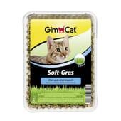 Soft Gras Hierba Para Gatos 100g de GimCat