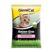 Katzen Gras Hierba Para Gato 100g de GimCat