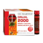 GINJAL 2000 - 20 x 10 ml - MARNYS