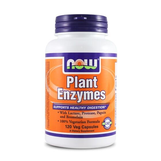 Plant Enzymes 120 Vcaps da Now Foods