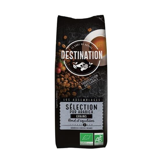 Café Puro Arábica En Grano Selección Bio 1 Kg de Destination
